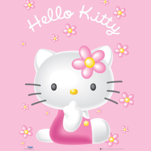 Hello Kitty - Pink Plakát, ( x cm)