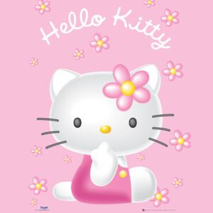 Hello Kitty - Pink Plakát, (40 x 50 cm)