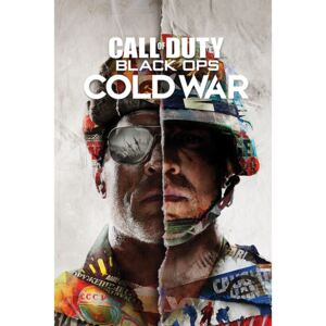 Plakát Call of Duty: Black Ops Cold War - Split, (61 x 91,5 cm)