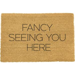 Fancy Seeing You Here lábtörlő, 40 x 60 cm - Artsy Doormats