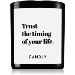 Candly & Co. Trust the timing illatos gyertya 250 g