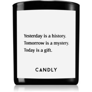 Candly & Co. Yesterday is a history illatos gyertya 250 g