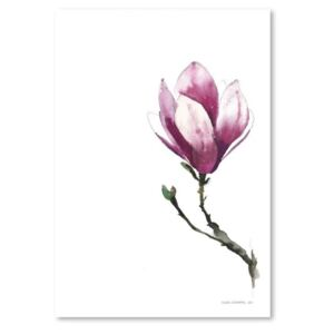 Magnolia II by Claudia Libenberg poszter, 30 x 42 cm - Americanflat