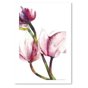 Magnolia I by Claudia Libenberg poszter, 30 x 42 cm - Americanflat