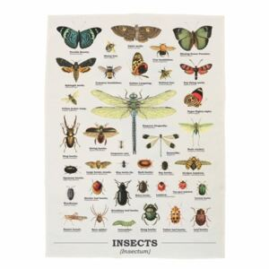 Insects pamut konyharuha, 50 x 70 cm - Gift Republic