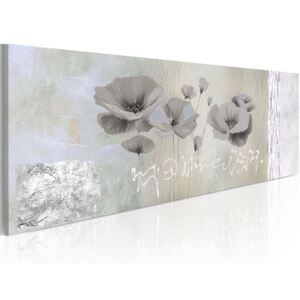 Vászonkép Bimago - Poppies in hibernation 120x40 cm