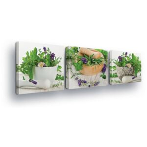 Vászonkép GLIX - Decorations with Herbs Trio 3 x 25x25 cm