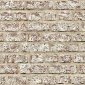 Options 2 Rustic Brick 889604
