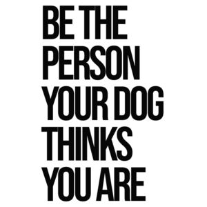 Ábra Be the person your dog thinks you are, Finlay Noa